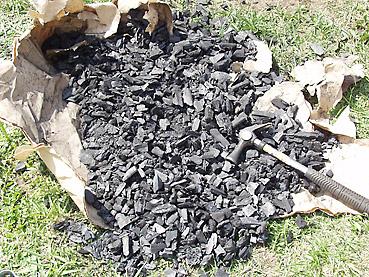 タマネギの電子栽培方法 その1~木炭で害虫を寄せ付けない畑にする