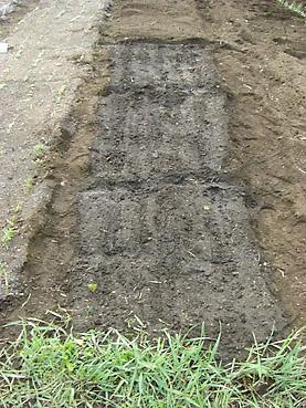 有機ニンジンの栽培方法 その2~種まきと発芽率を劇的に飛躍させるオリジナル技