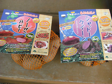 有機ジャガイモの栽培方法 その1~種芋の準備