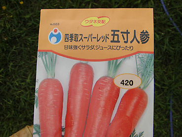 有機ニンジンの栽培方法 その1~収穫時期の違う種を蒔く